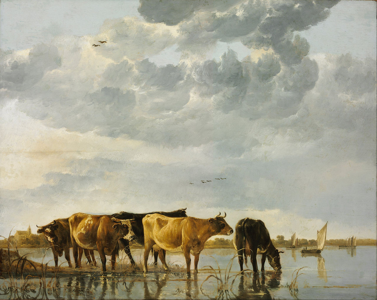 Cows in the water xx museum of fine arts budapest